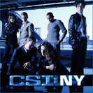Csi: NY: Stuck On You